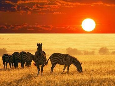 Güney Afrika Safari Turu // Emirates Hava Yolları ile Sabiha Gökçen Havalimanı Hareket