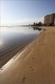 Arkin Palm Beach