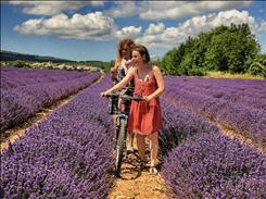 Basklar & Güney Fransa (Türk Hava Yolları Tarifeli Seferi ile)