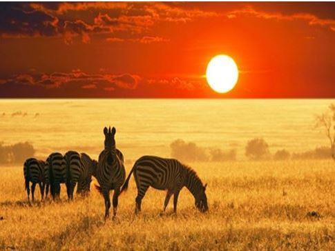 Güney Afrika Turu Türk Havayolları İle Vizesiz!