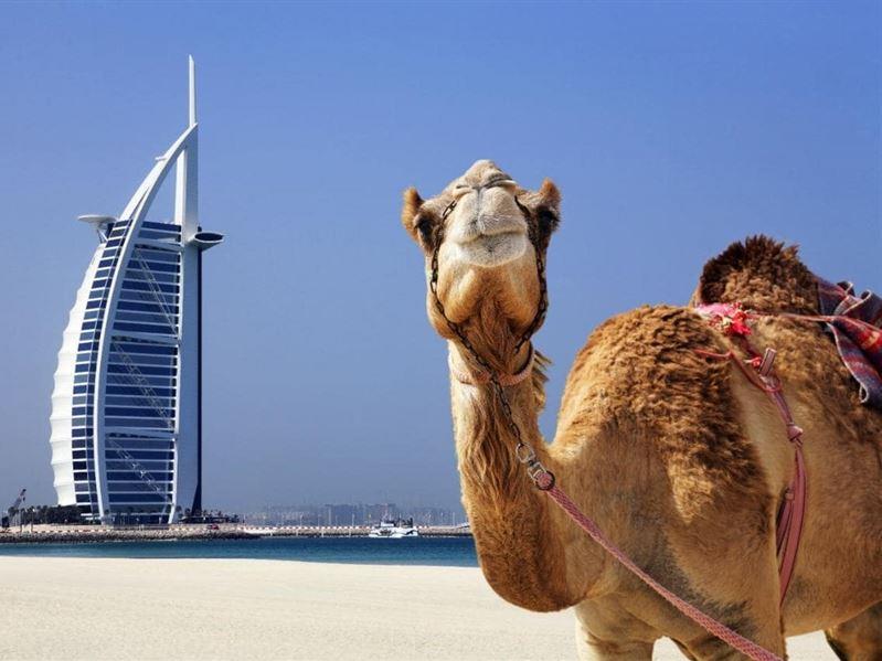 Dubai Turu Türk Havayolları İle Sömestr/Kış Dönemi
