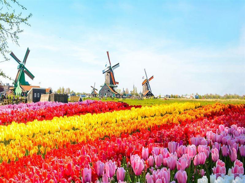 Kurban Bayramı Dönemi Amsterdam Turu Atlas Global Havayolları İle