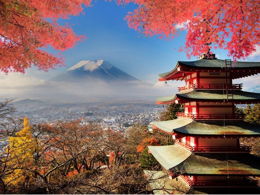 JAPONYA - KORE TURU 2021