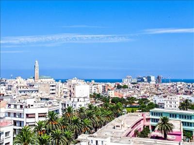 Tunus Turu TUNISAIR Havayolları İle