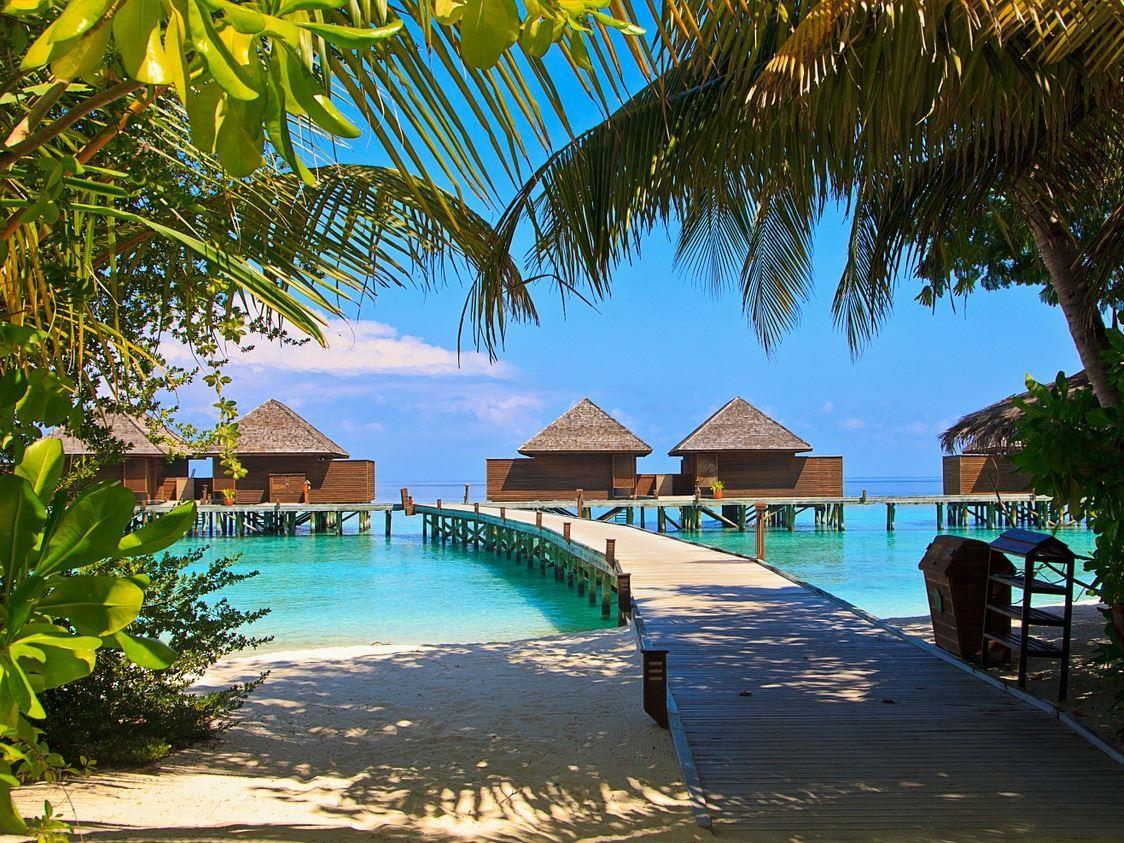 Maldivler Balayı Turu 4 Gece Kasım Dönemi