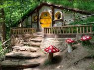 Günübirlik Hobbit Evleri - Ormanya Tabiat Parkı - Maşukiye - Sapanca Turu